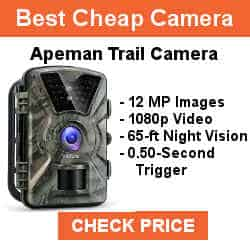 "best game camera 2019 APEMAN Trail Camera 12MP 1080P 2.4"" LCD Game&Hunting Camera with 940nm Upgrading IR LEDs Night Vision up to 65ft/20m IP66 Spray Water Protected Design"