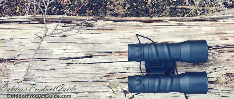 Best Binoculars for Bird Watching 2020